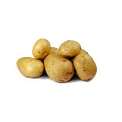 Round Potato