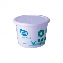 Aarong Dairy Sour Yogurt