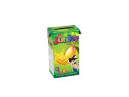 PRAN Junior Mango Fruit Drink
